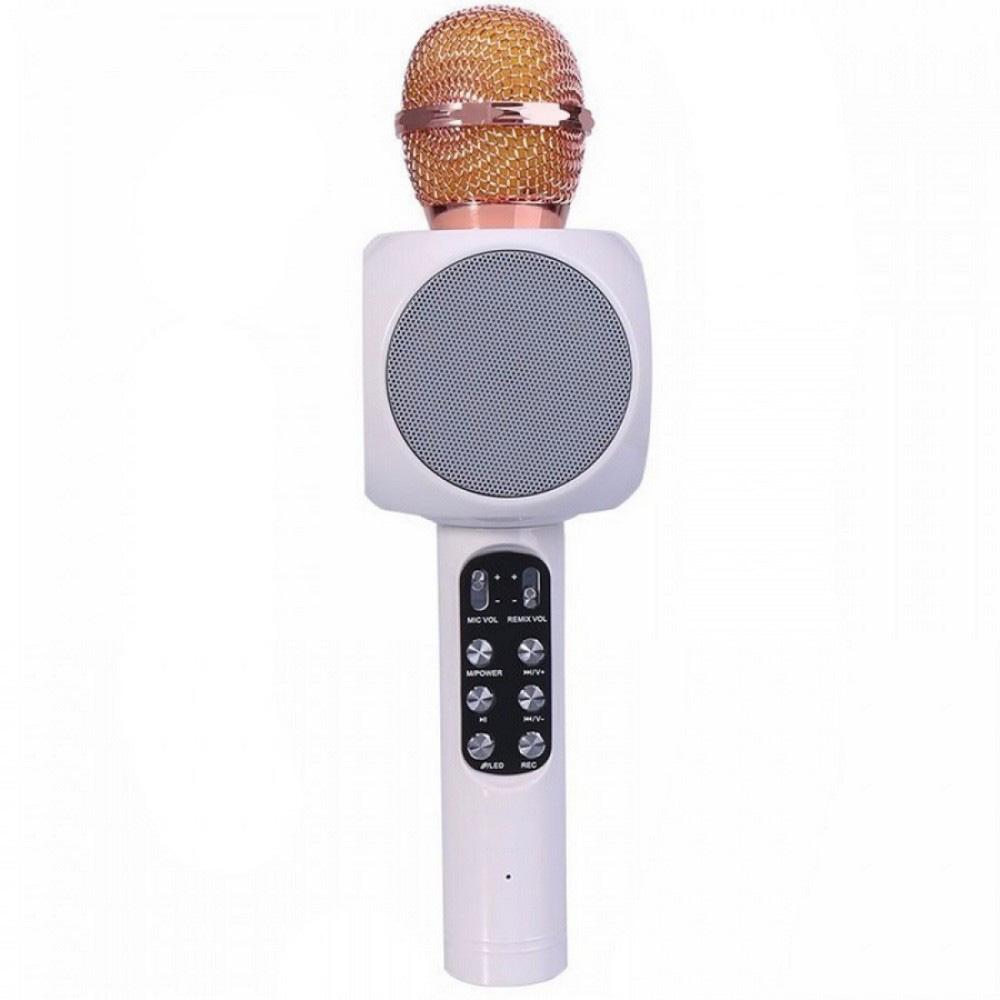 Колонка с функцией микрофона караоке WSTER WS-1816 белый