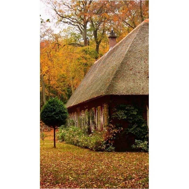 Гибкий настенный обогреватель Доброе тепло - Осенний пейзаж от MELEON