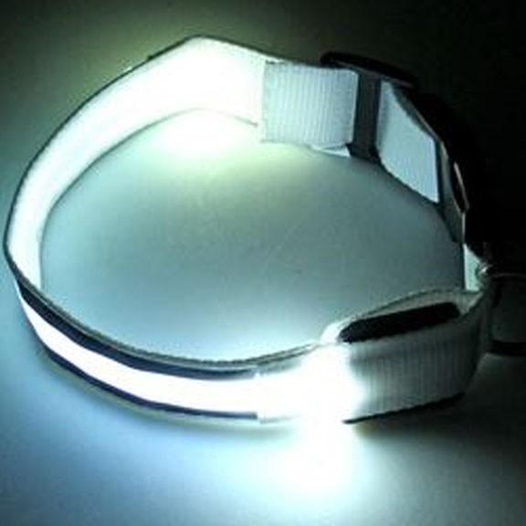 Светящийся ошейник со светоотражателем - 38-40 см, белый от MELEON