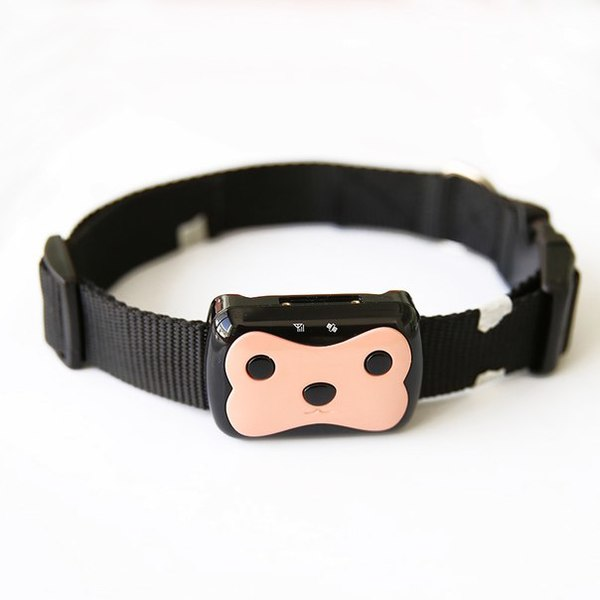 GPS ошейник для собак и кошек