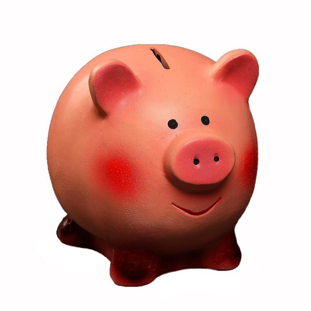Копилка - Свинка улыбака, 16х13х14 см фото