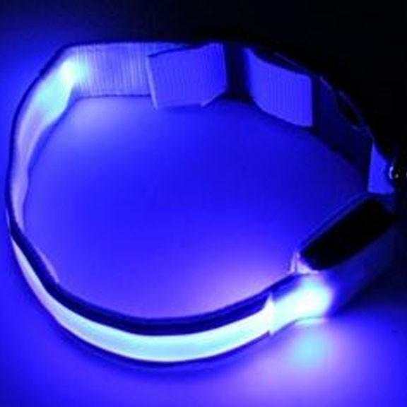 Светящийся ошейник со светоотражателем - 45-50 см, голубой