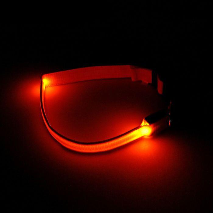 Светящийся ошейник - 45-50 см - оранжевый от MELEON