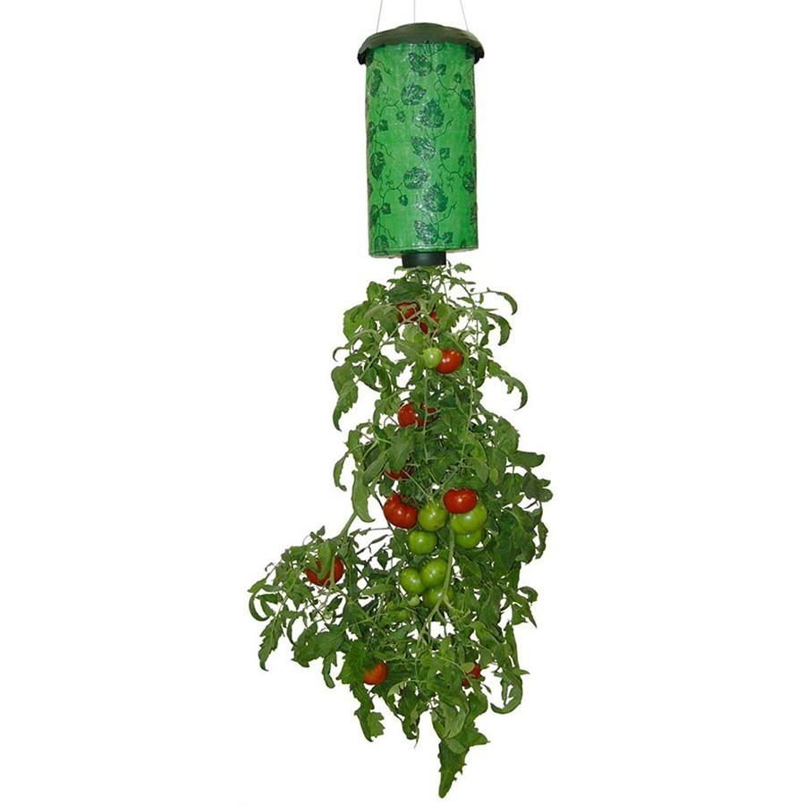 Topsy Turvy - вертикальное выращивание помидоровДля ухода за растениями<br>А вы знаете, что помидоры и другие овощи можно вырастить с удовольствием? Для этого не нужно копать, мучить спину, постоянно следить за плодами, а нужно просто купить революционную установку в интернет магазине Мелеон под названием Topsy Turvy!<br>