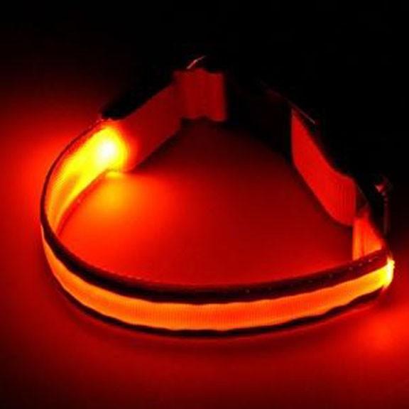 Светящийся ошейник со светоотражателем - 45-50 см, оранжевый от MELEON