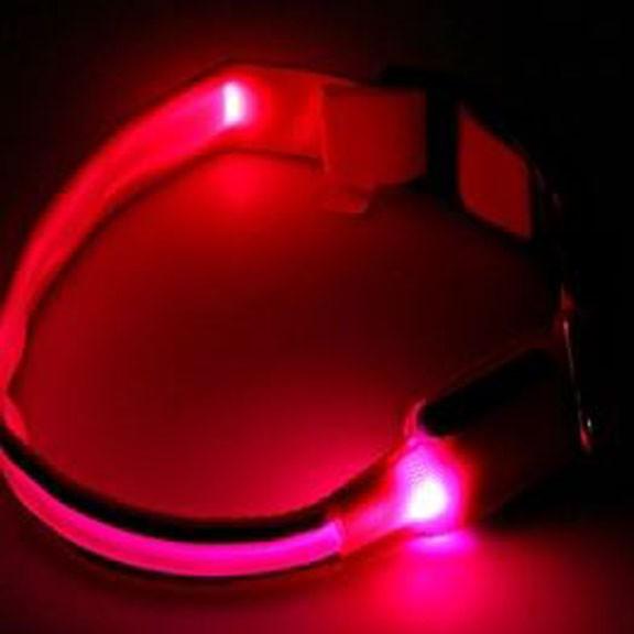 Светящийся ошейник со светоотражателем - 38-40 см, розовый от MELEON