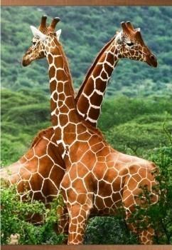 Обогрев настенный Домашний очаг - Жирафы, 500 Вт